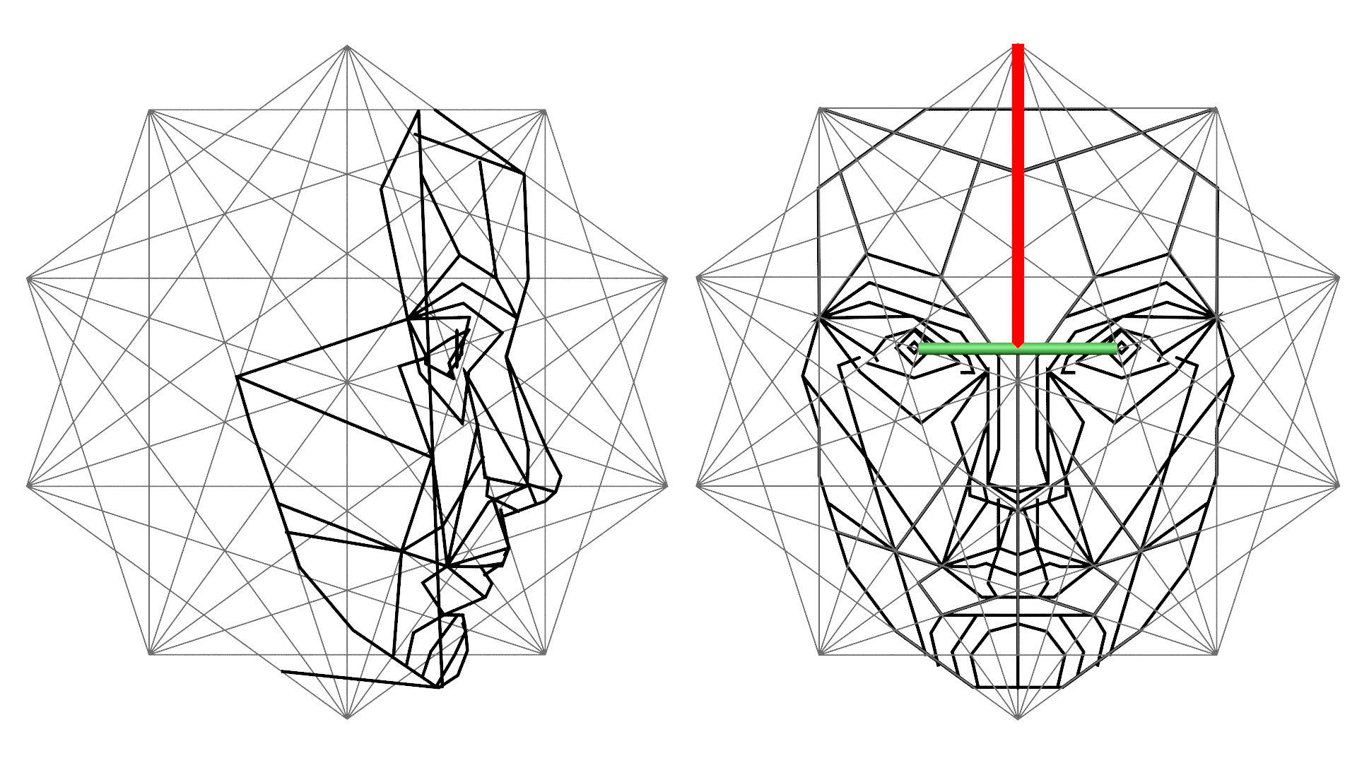 The Golden Ratio in 3D human face modeling